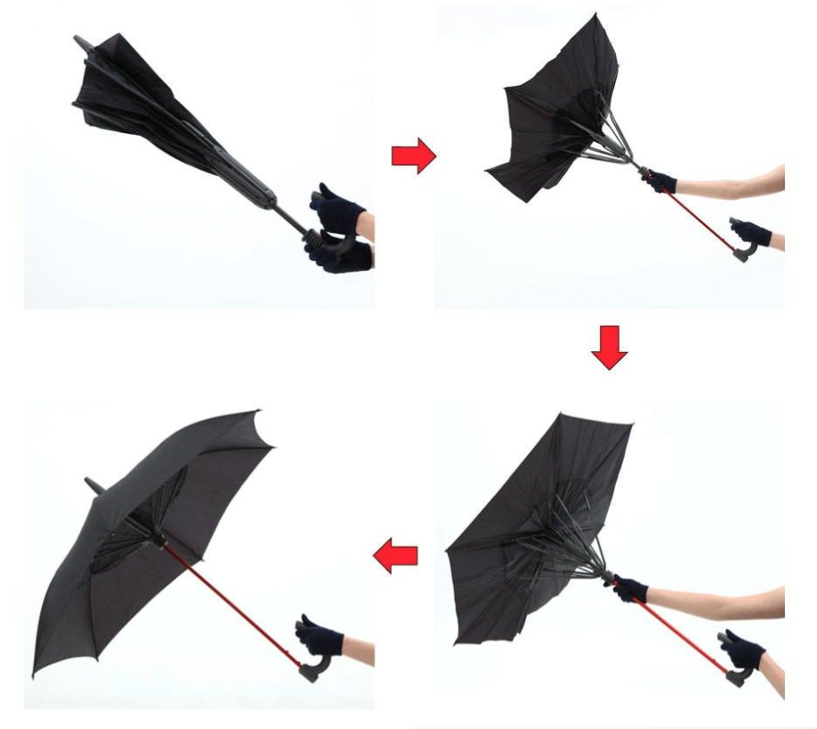 Gax Umbrella - flat 6